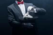 Cropped View Of Professional Magician Showing Trick With White Rabbit In Hat, In Dark Room With Smoke