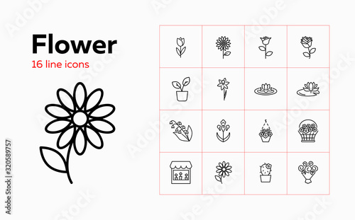 Flower icons Tapéta, Fotótapéta