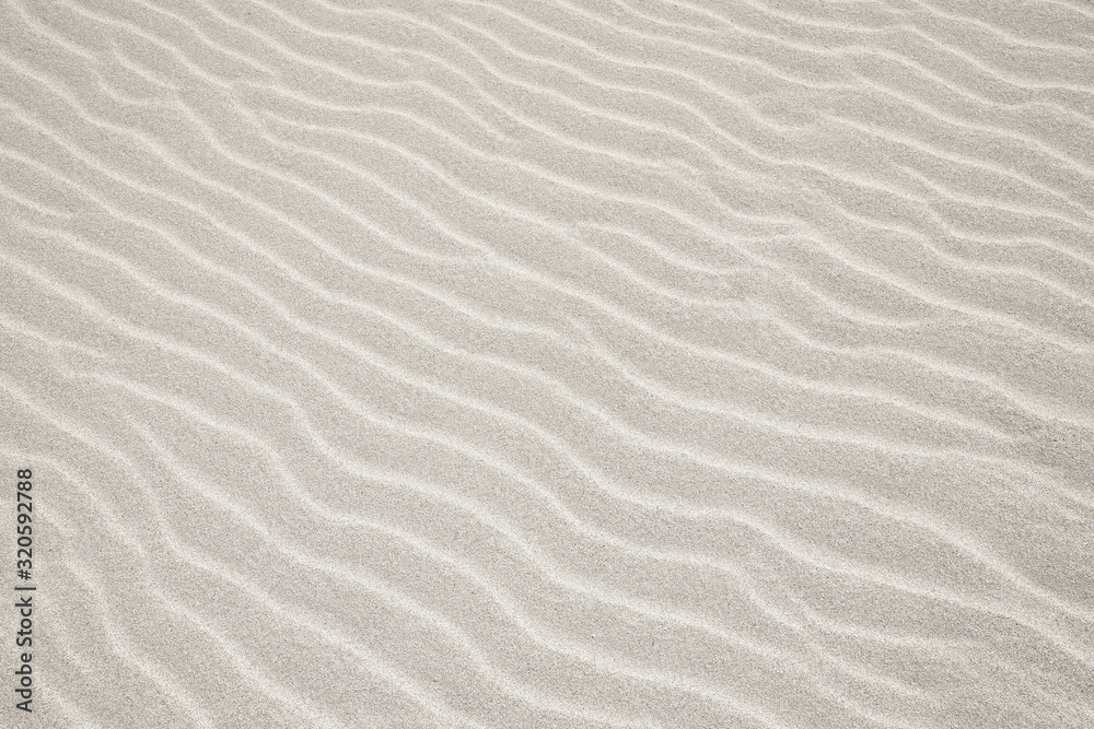 Fototapeta White Sand dunes background texture. Beach and sand texture. Pattern of sand. Beautiful sand dune in sunrise in the desert. Steps on the beach sand.