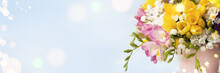Spring Background With Freesias