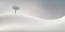 La Saison D'hiver Symbolisé...