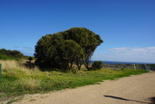 Walk Around Port Campbell National Park To The Twelve Apostles