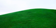 Real Green Grass On Hill On Wh...