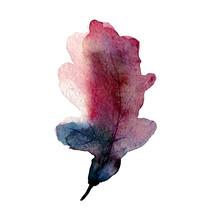 Watercolor Oak Leaf Painting O...