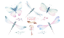 Watercolor Fly Dragonfly Sprin...
