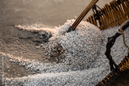 Photo récolte de sel