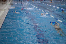 Competition Swimming Pool Crowded Of Swimmers Training.