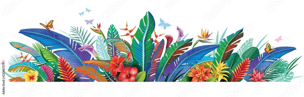 Fototapeta Border with tropical jungle plants flower