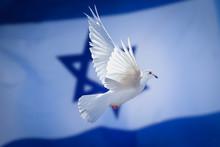 Dove Of Peace Israeli Flag Background, Israel