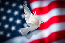 Dove Of Peace American Flag Background