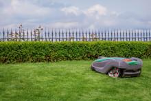 Robotic Lawn Mower On Grass, S...
