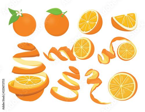 Valencia Oranges  Fotomurales