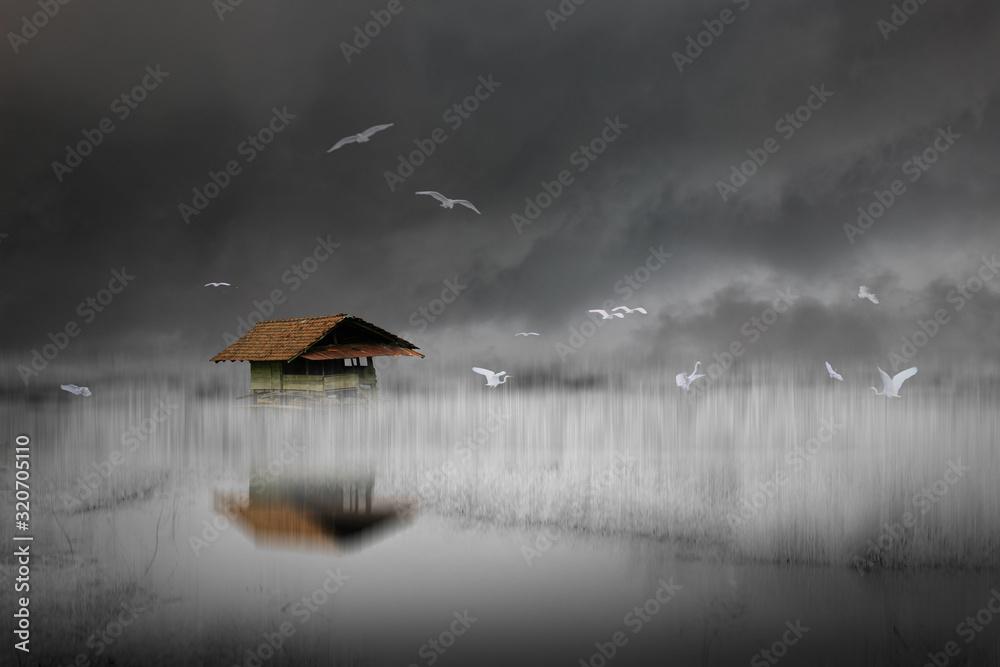 Fototapeta little house on the dream land