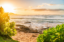 Hawaii Beach Landscape At Suns...
