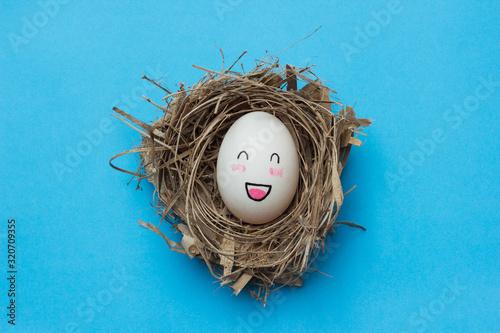 Fototapeta Eggs in the nest on a blue background obraz
