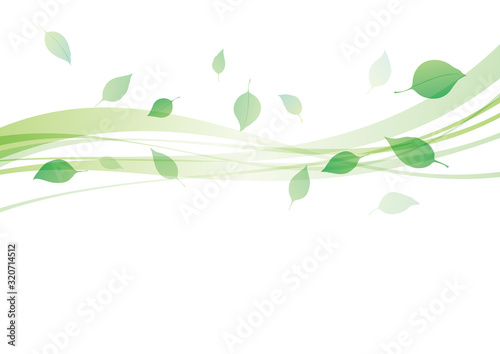 Fotomural 葉 新緑 舞う 背景 緑