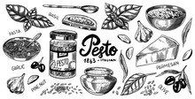 Pesto Sauce Set. Basil Leaves,...