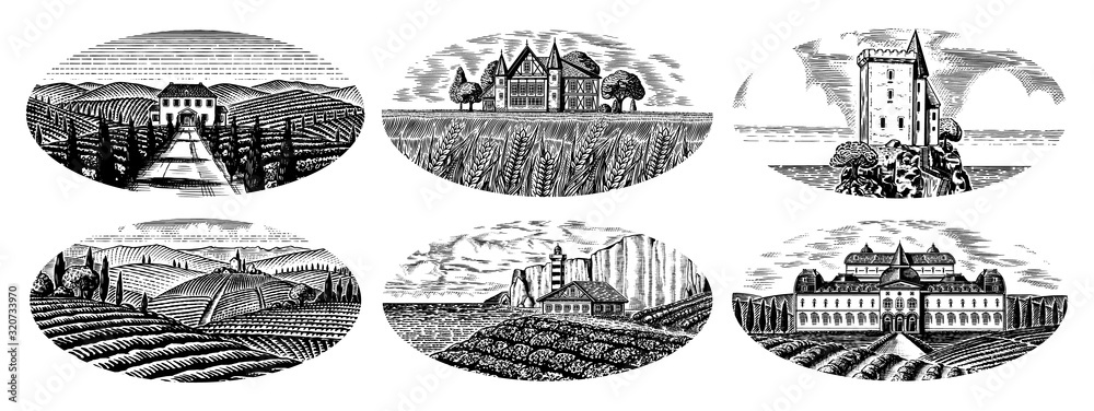 Fototapeta Vineyards Set. Vine plantation for bottle labels. Scenic view of French or Italian engraved landscape. Mountains Rural Fields Wheat Hills. Hand drawn vintage sketch for alcohol, whiskey beer poster.