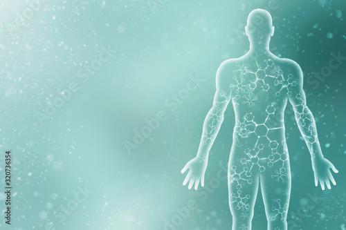 Fotografía 2d illustration Human Male Muscle Body