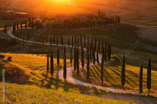 Foto Impressive spring landscape,view with cypresses and vineyards ,Tuscany,Italy