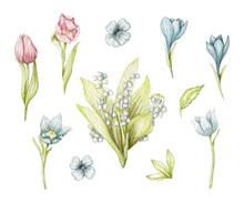 Big Set With Spring Flowers, L...