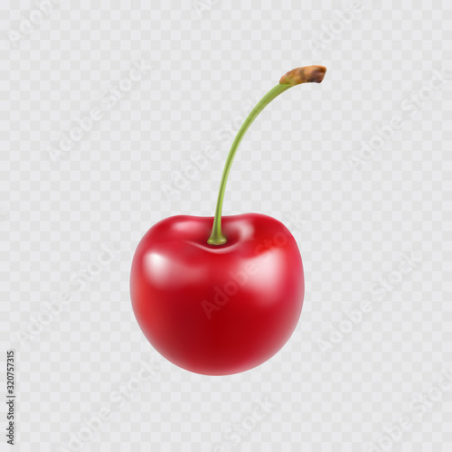 Cherry isolated on transparent background. Sweet 3d red berry icon. Vector realistic food element.. Fototapete