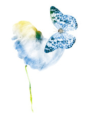 Watercolor Flower With Butterfly, Isolated On White Background