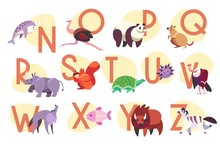 Alphabet With Exotic Animals, Children Abc Vector Illustration. Learn English Language In Kindergarten, Cute Animals Cartoon Characters. Letters Of English Alphabet For Preschool Kids Education