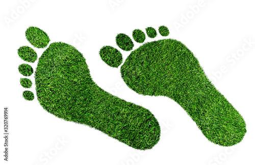 Cuadros en Lienzo ecological footprint concept, barefoot footprint made of lush green grass isolat