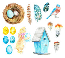 Nest With Eggs, Birdhouse, Rab...