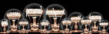 Light Bulbs With Personal Deve...