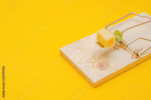 Mousetrap with cheese on a yellow background close-up Canvas Print