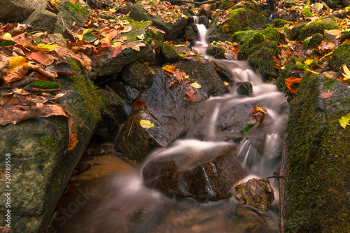 A clean mountain stream flows between rocks adornet with moss in autumn