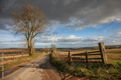Fotomural Cotswold lane near Winchcombe, Gloucestershire, England