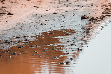 Deep Spring Puddle On The Sand...