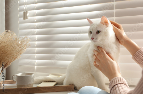 obraz PCV Young woman petting her beautiful white cat at home, closeup. Fluffy pet