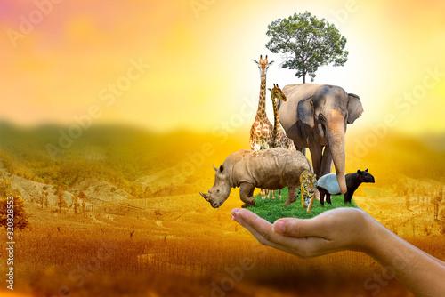 Wildlife Conservation Day Wild animals to the home Fototapeta