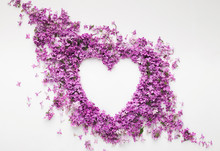 Lilac Flowers In Heart Shape Isolated On White, Spring Love Concept