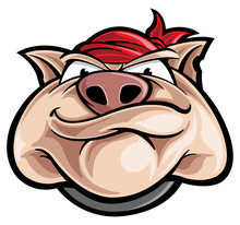 Hog Cartoon Character