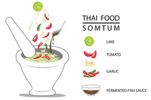 Thai Food Papaya Salad Or Somtum Popular Dish For Thai People With Ingredient And Text Vector