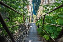 Pont Fôret Falaise Verdure Es...