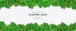 Clover shamrock leaf seamless border on transparent background vector decorative elements template