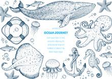 Sea Animals Hand Drawn Collect...