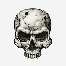 Human Skull Front On White