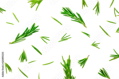 Isolated on white rosemary textured top view flat lay background with green, freshly cut leaves, twigs and branches.