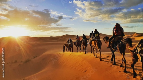 Foto camel caravan in the desert Sahara Morrocco