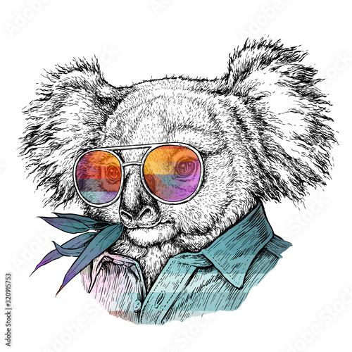 Naklejki koala  hand-drawn-portrait-of-koala-bear-in-glasses-vector-illustration-isolated-on-white