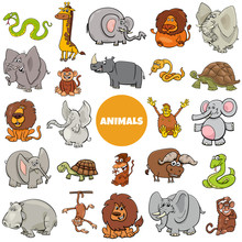 Wild African Animal Characters...