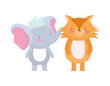 little elephant and fox cartoon character on white background