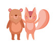 cute squirrel and bear cartoon on white background